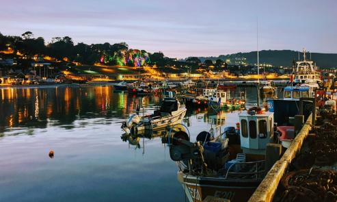 Boats in the harbour as night falls