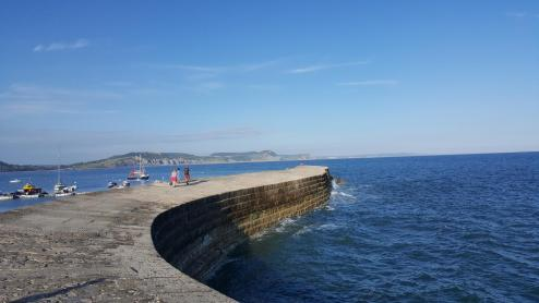 End of the Cobb