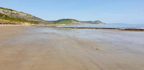 East Cliff beach towards Charmouth at low tide