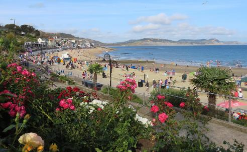 Roses and Lyme Regis beach